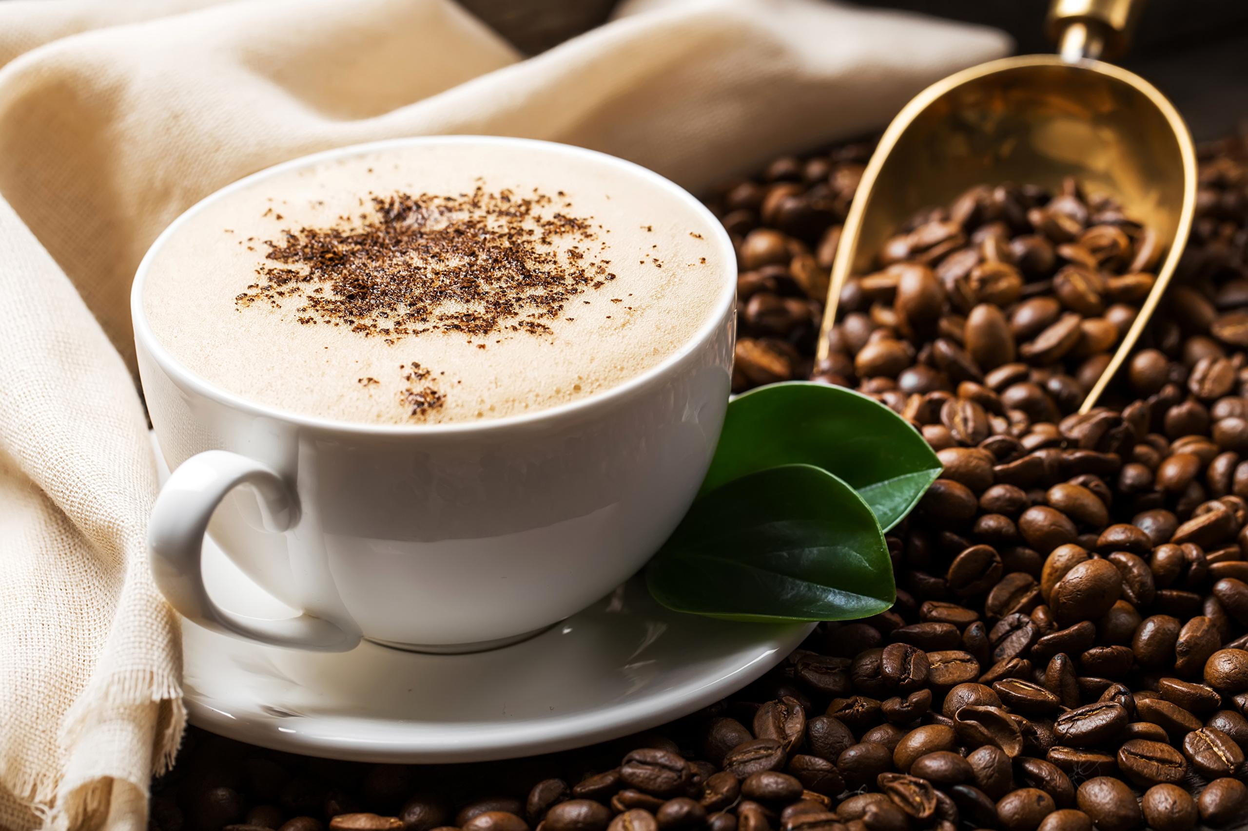 фамилия наилучшее фото о кофе пошаговый урок