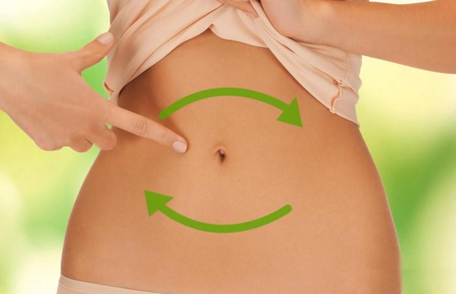 Влияние микробиоты кишечника на похудение и здоровье человека