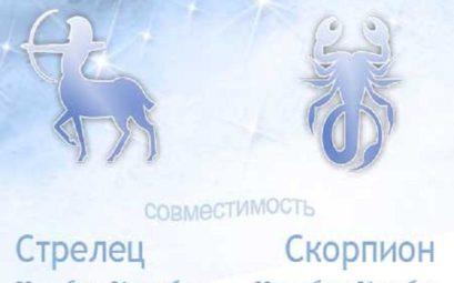 Совместимость знаков зодиака Скорпион и Стрелец