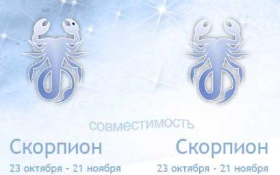 Совместимость знаков зодиака Скорпион и Скорпион