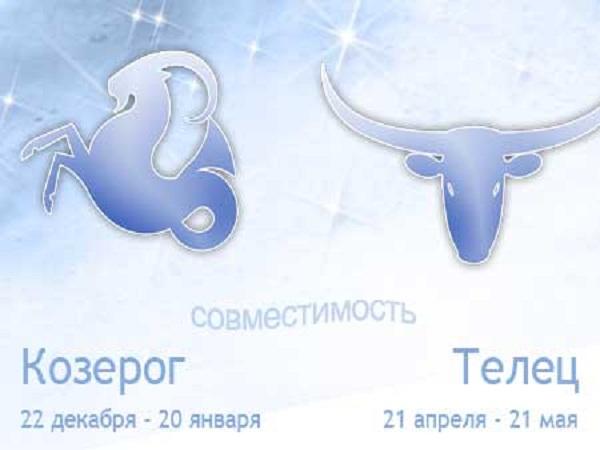 Гороскоп совместимости знаков зодиака Телец и Козерог