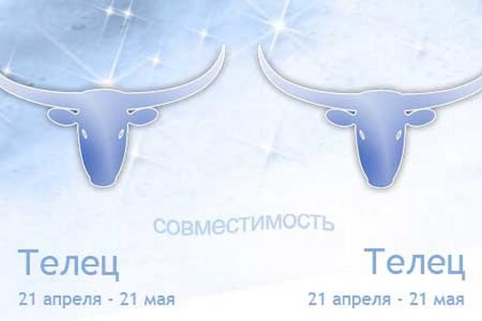 Совместимость знаков зодиака Телец и Телец