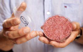Искусственное мясо в России стоимость